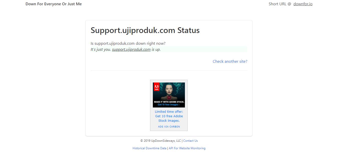 Cek status website di Downforeveryoneorjustme.com