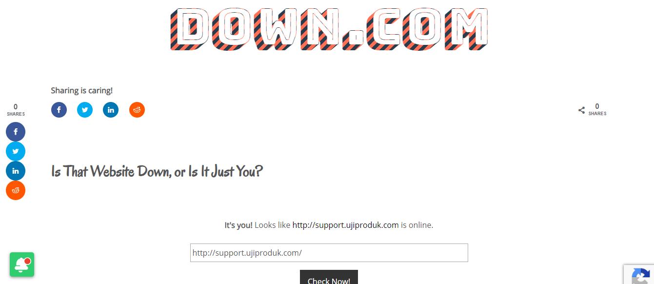 Cek website down di Down.com