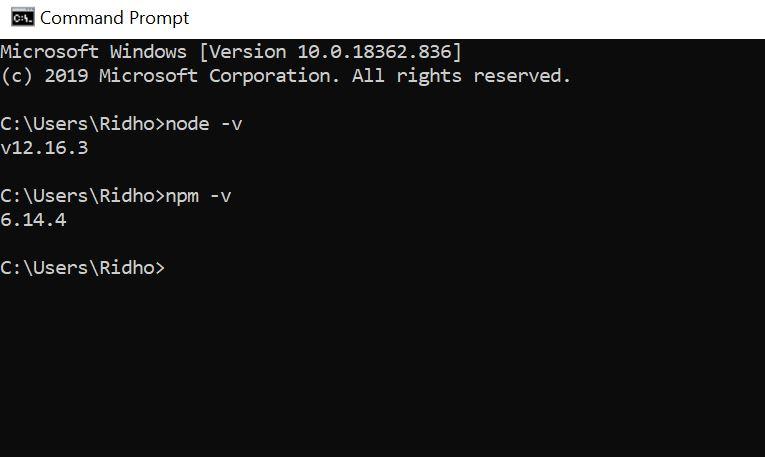 Cek versi node js dan npm