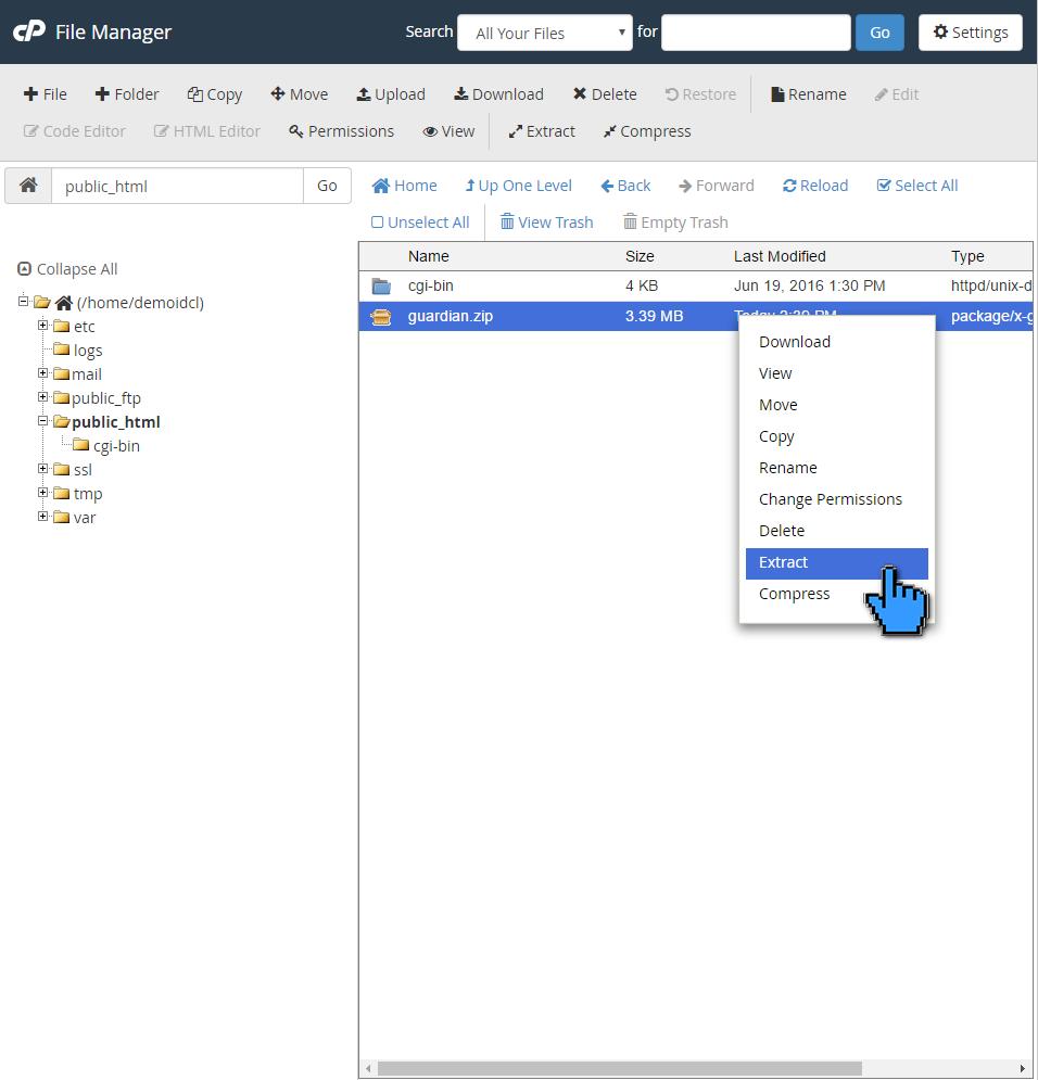 Cara Upload File Website ke Hosting di cPanel 8 (pointer)