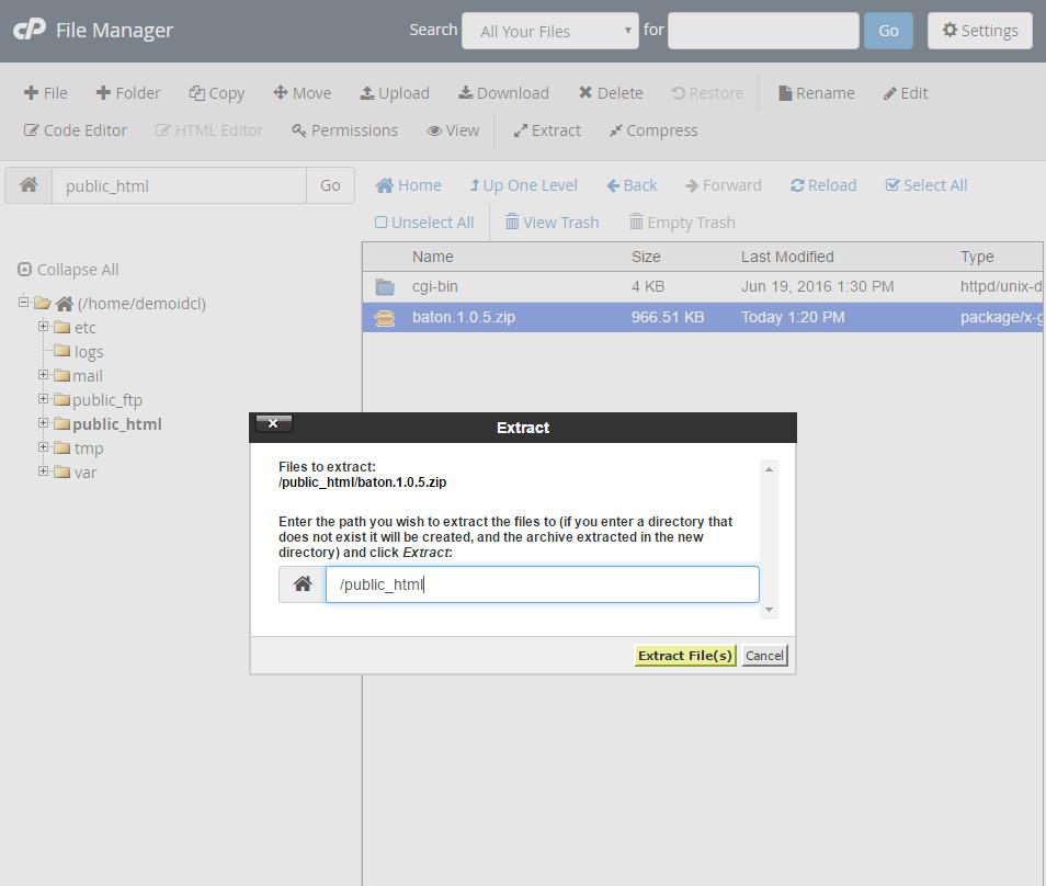 Cara Upload File Website ke Hosting di cPanel 9