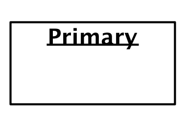 The word primary in a box