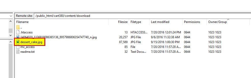 sample file name