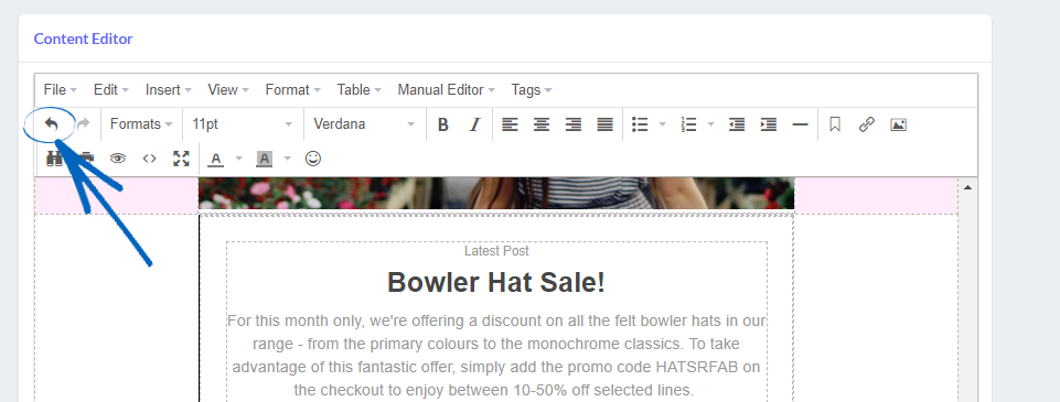 Email Marketing - Creating a Campaign using the Text Editor : EKM