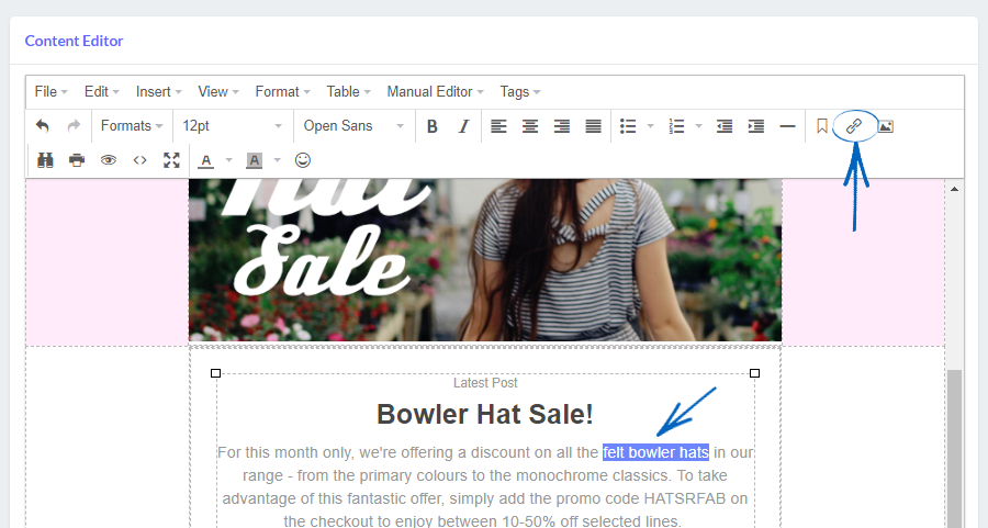 Email Marketing - Creating a Campaign using the Text Editor