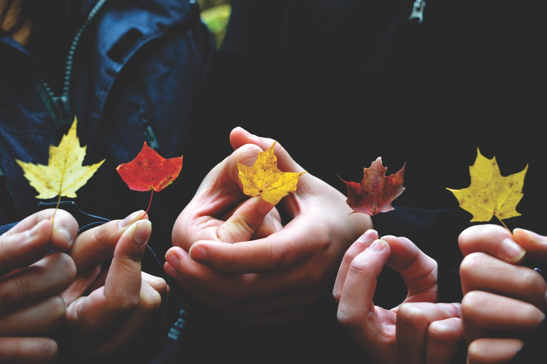 Five people holding five different coloured leaves