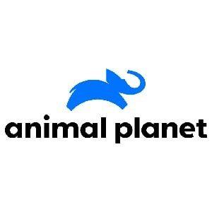 Animal Planet(HD)