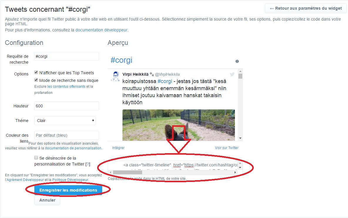 la boite qui contient le code du widget Twitter