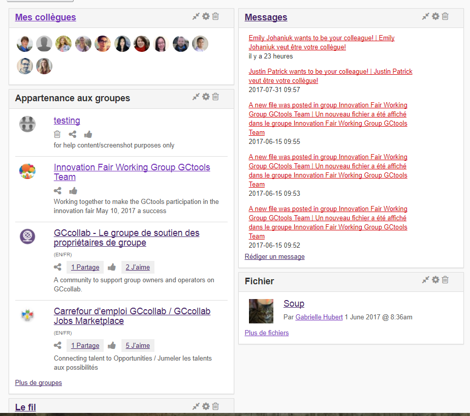 exemples des widgets