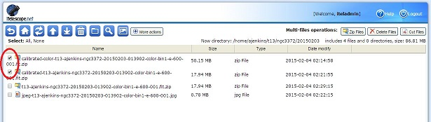 How do I download multiple files using zip (Web Browser