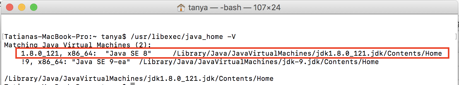 How do I run API Studio with a specific Java version