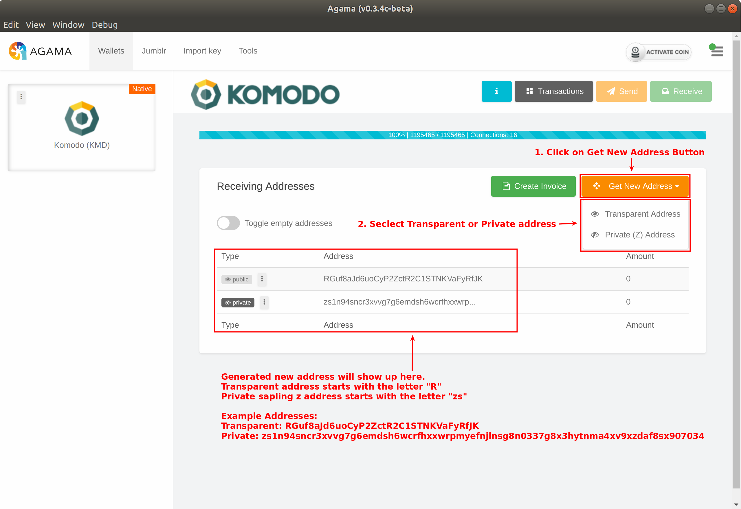 Generate a New Transparent or Private Address and Export Private