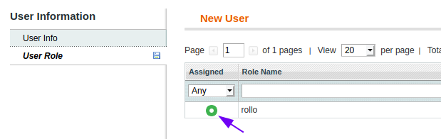 User Role form