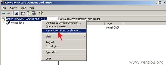 servidor de nivel funcional raiseforest 2003