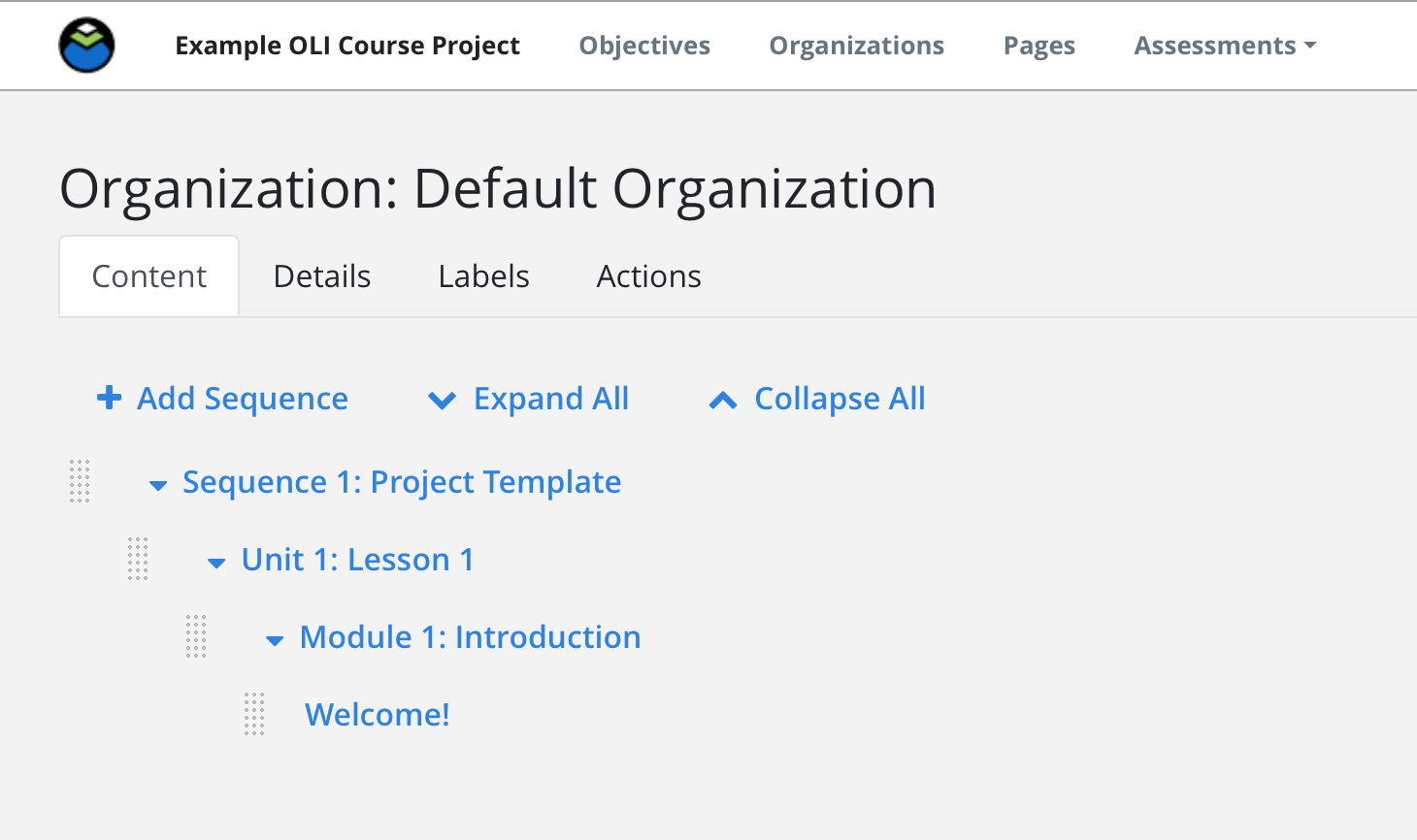 A new, default organization with one sequence, unit, module, and page.