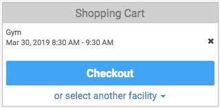 Shopping cart checkout button