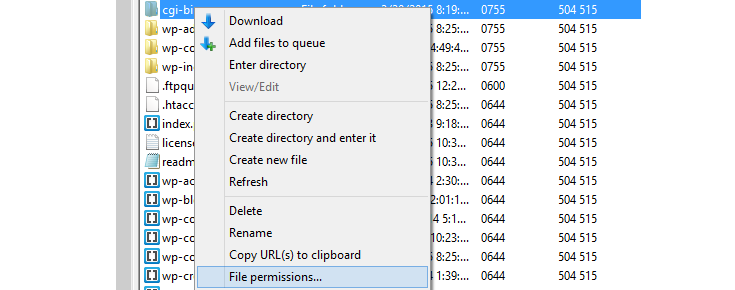 """The cgi-bin folder has been right clicked and the mouse is hovering over the """"File permissions"""" option from the list that appeared."""