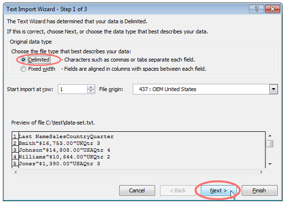 convert CSV to excel - delimited