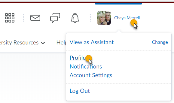 cursor highlighted over username and Profile links