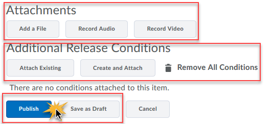 the attachments, release conditions, and publish options