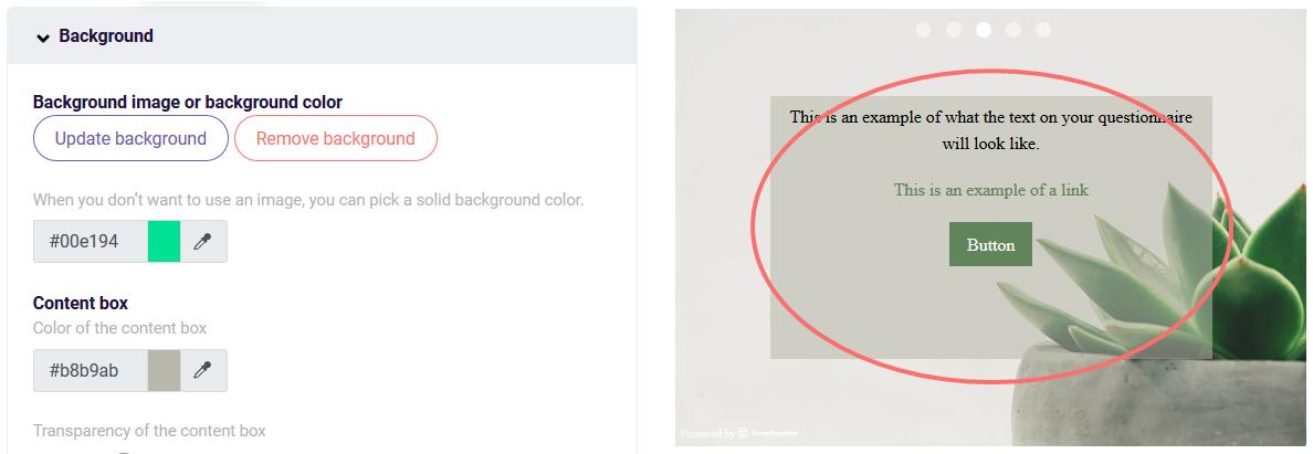 Design settings content box