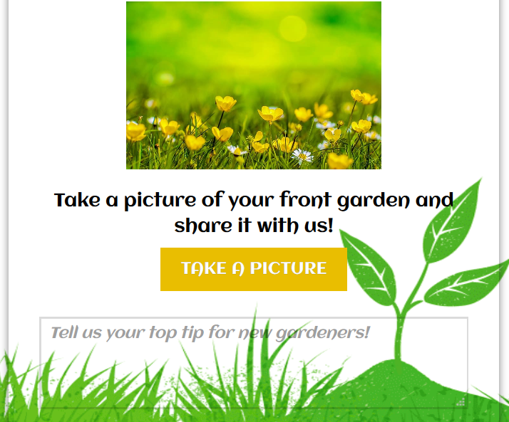 Image upload example with text box