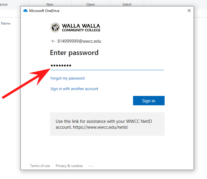 Arrow pointing to password field