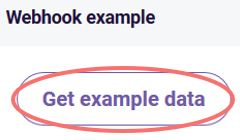 Get webhook example data