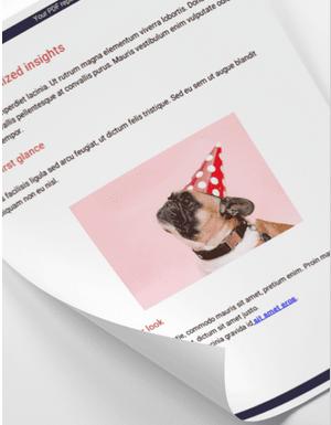 example image widget