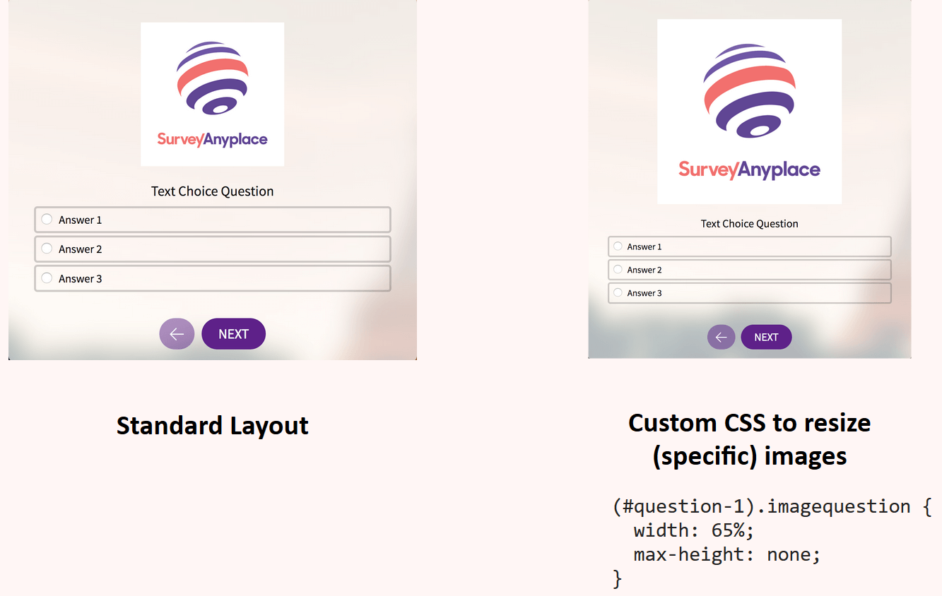Custom CSS to resize images
