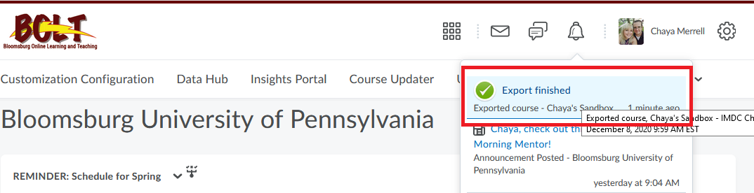 Once the package is ready, you will get a notification on the bell icon in your nav bar