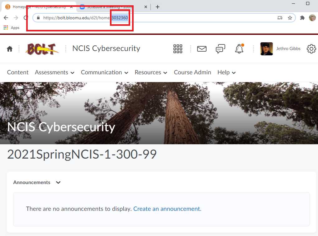 highlight and copy the course ID number in the address bar of your browser