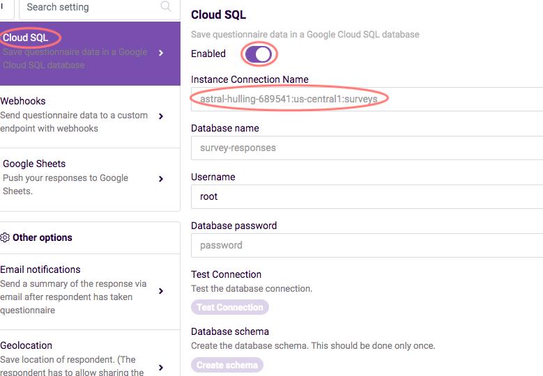Cloud SQL enable