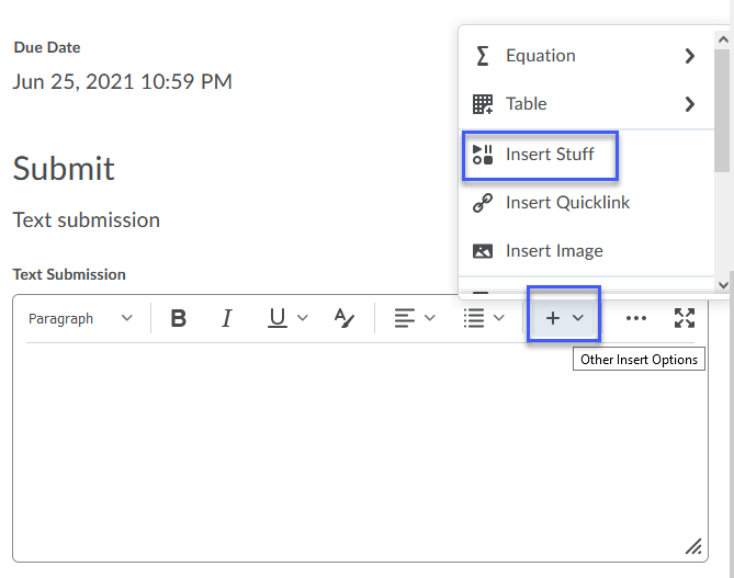 the Insert Options menu in the HTML editor showing the Insert Stuff option