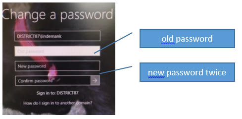Old password in first box and new password in second and third boxes
