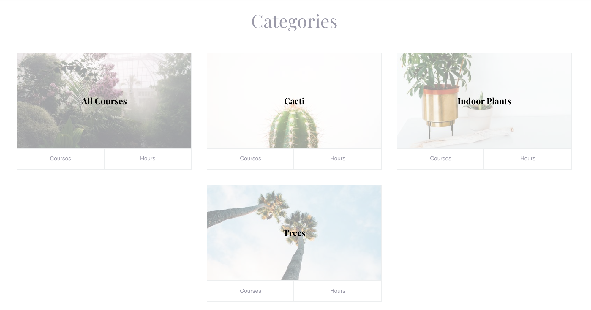 All categories [smart section]