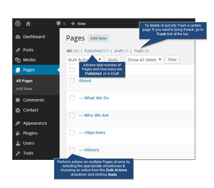 Managing Pages