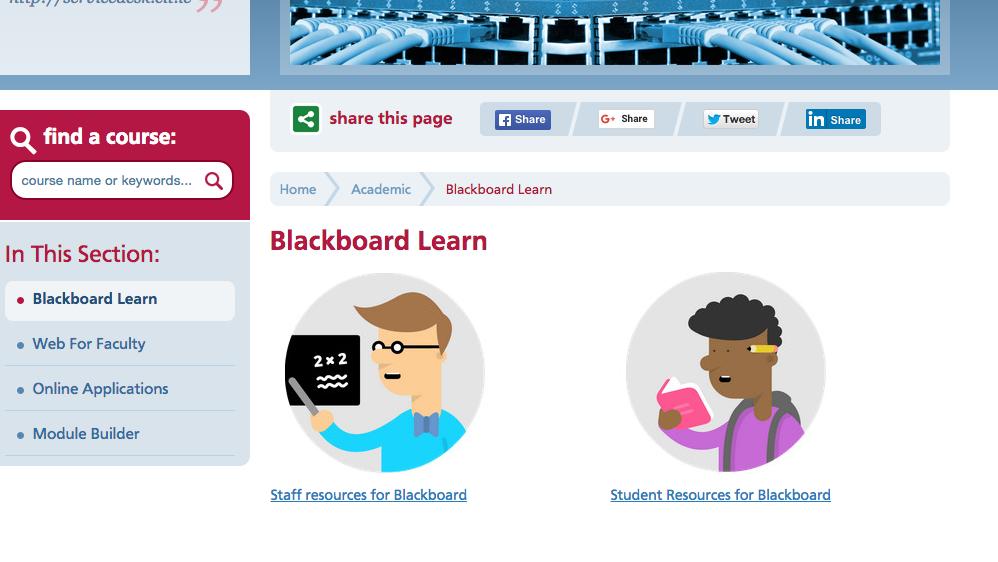 Blackboard Learn Support