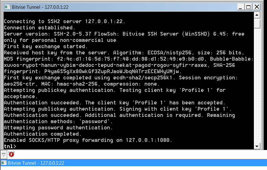 Run Bitvise SSH Client as a Windows Service with FireDaemon Pro