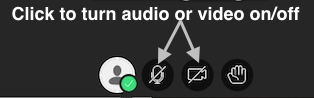 screenshot of audio and video buttons on main Collaborate session screen