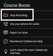 screenshot of stop recording button