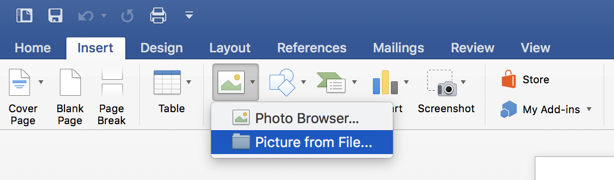 """Selecting """"Picture from File"""" from the Word ribbon."""