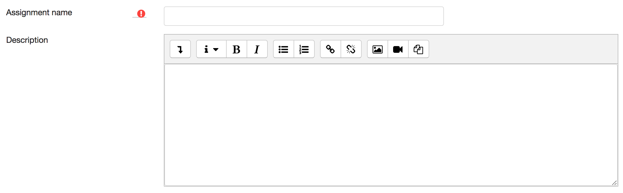 A text editor for the Assignment Activity