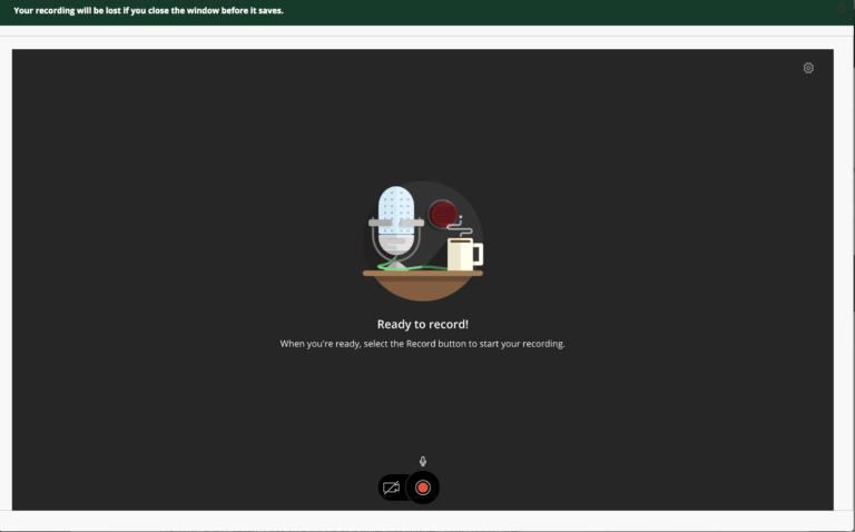 screenshot of audio/video recorder