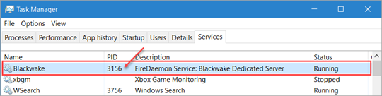 FireDaemon Service PID - From Task Manager