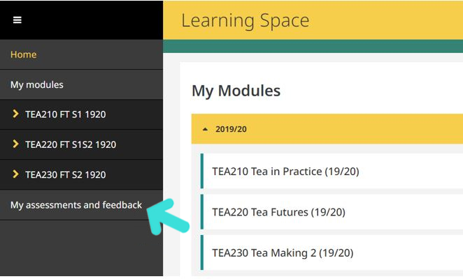 My Assessments and Feedback navigation link in the Learning Space
