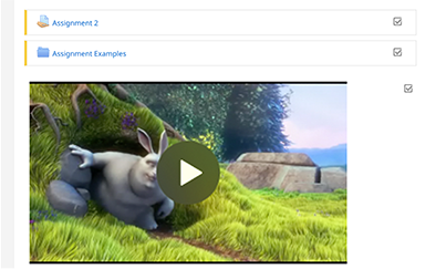 Example of the video player in Learning Space.