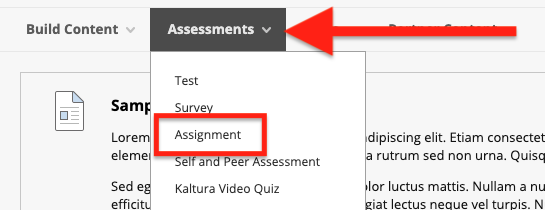 Click on the Assessments menu and select Assignment