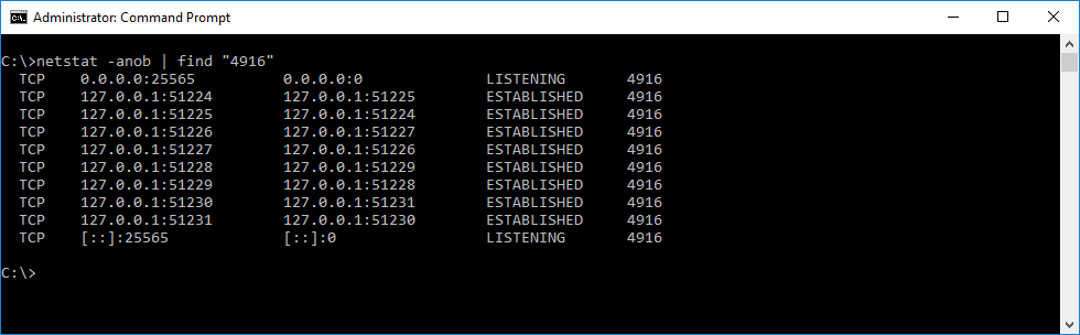 Minecraft Dedicated Server netstat ports example