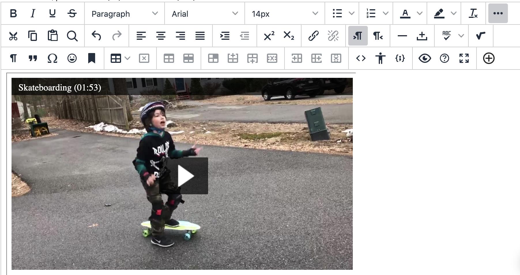 screenshot of myLesley text/content area